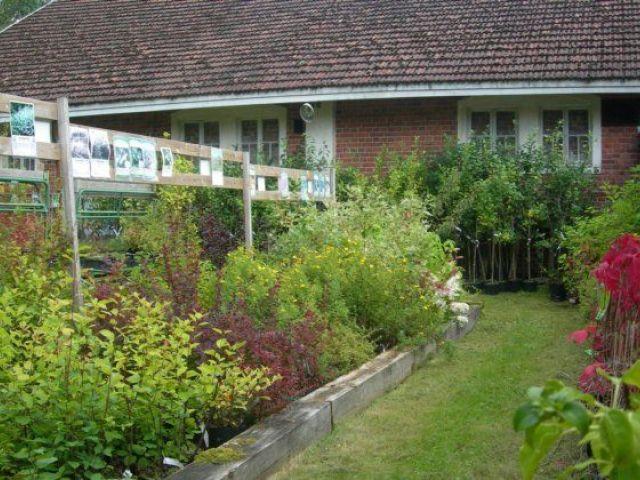 Harvialan taimimyymälä